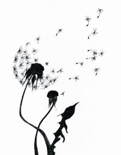 A drawing of a dandelion head scattering seeds.